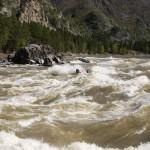 Сплав по реке Катунь